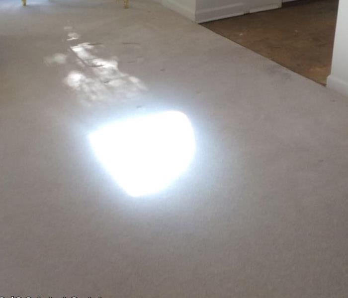 Water Damage to White Carpet After