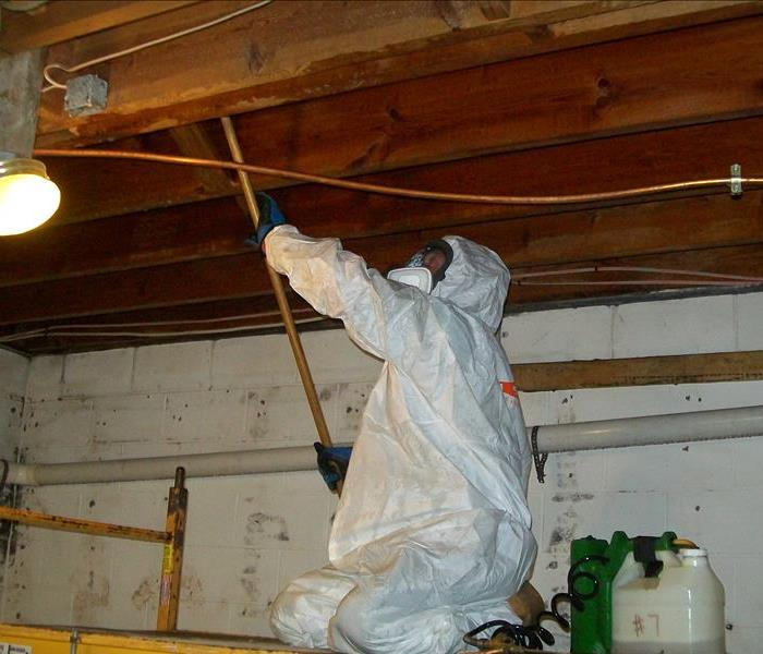 mold removal versus mold remediation what 39 s the difference servpro